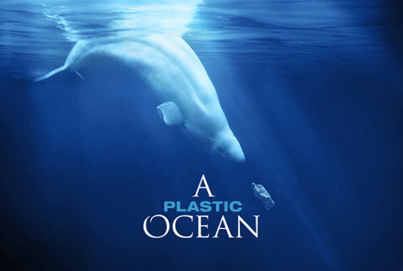 "Documental ""A Plastic Ocean"""